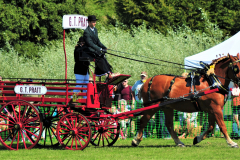 Suffolk Horse Spectacular - Marks Hall Coggeshall 2018